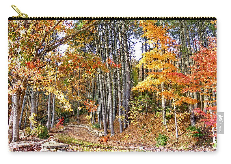 Landscapes Carry-all Pouch featuring the photograph Fall Driveway And Coco The Dog by Duane McCullough