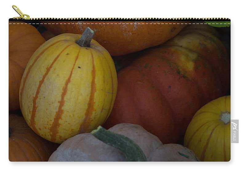 Fall Carry-all Pouch featuring the photograph Fall Harvest by Michael Moriarty