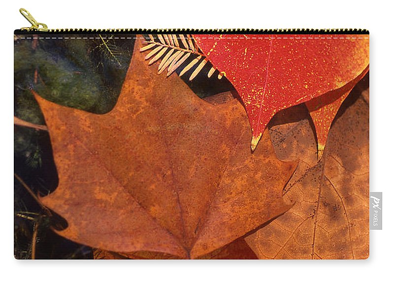 Leaves Carry-all Pouch featuring the photograph Fall Leaves I I by Jim Smith
