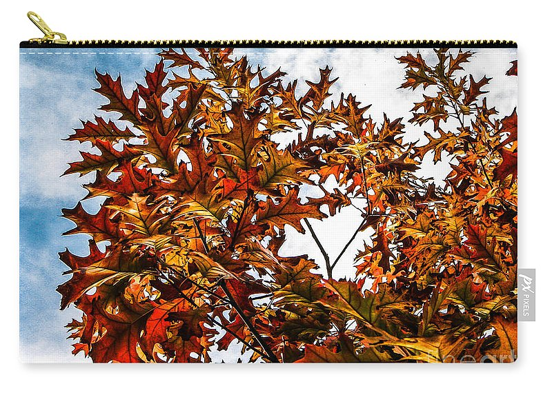 Maple Carry-all Pouch featuring the photograph Fall Maple Leaves by Robert Bales