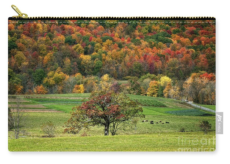 Autumn Carry-all Pouch featuring the photograph Fall Splendor by Claudia Kuhn