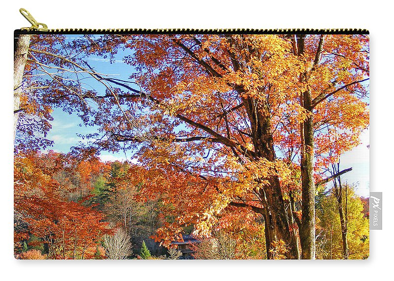 Landscapes Carry-all Pouch featuring the photograph Fall Trees by Duane McCullough