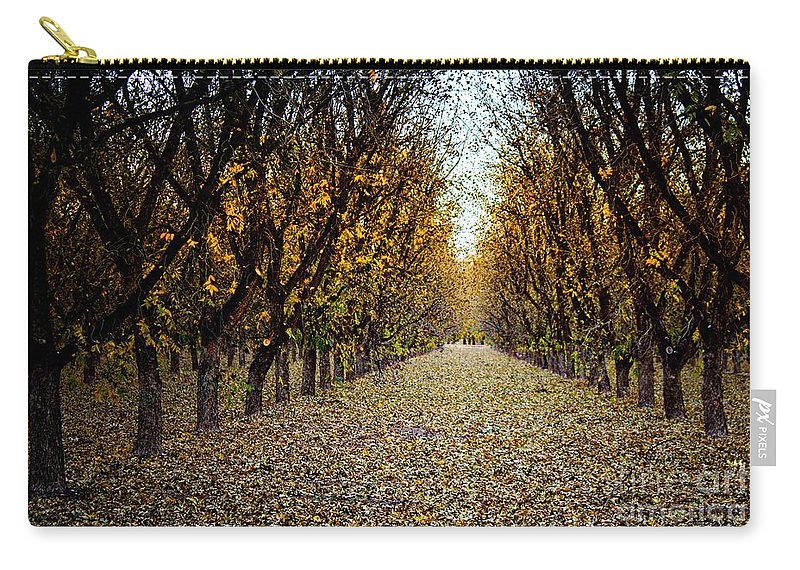 Pecan Trees Carry-all Pouch featuring the photograph Fallen Leaves by Barbara Chichester