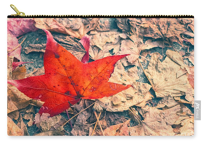 Autumn Carry-all Pouch featuring the photograph Fallen Red Leaf by Silvia Ganora