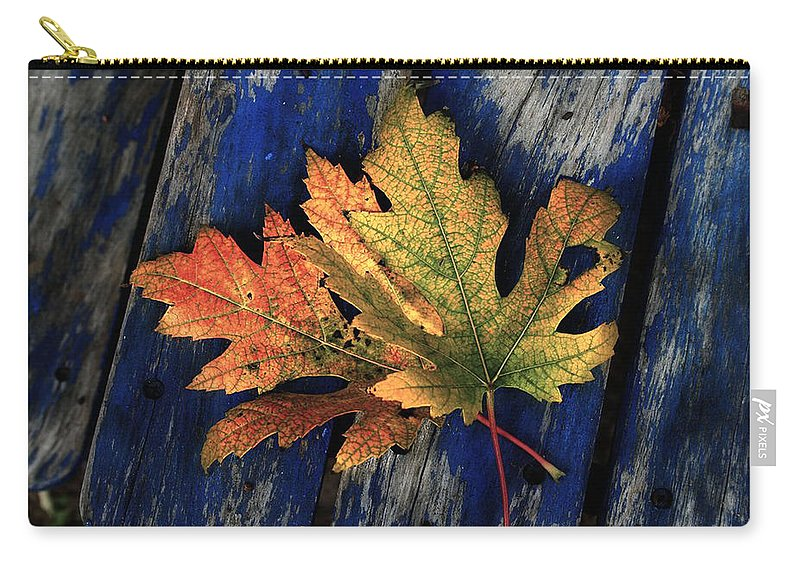 Nature Carry-all Pouch featuring the photograph Falling For Colour by Linda Sannuti
