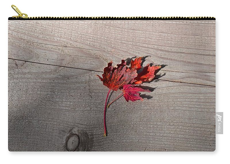 Leaf Carry-all Pouch featuring the photograph Falling Leaf by Image Takers Photography LLC - Laura Morgan