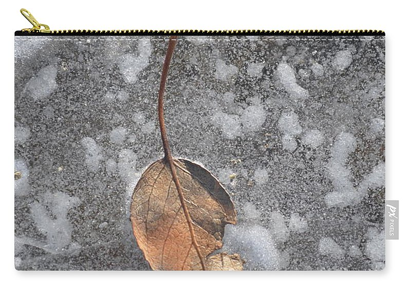Fall Carry-all Pouch featuring the photograph Fall's Fallen Meets Spring Sunshine by Brian Boyle