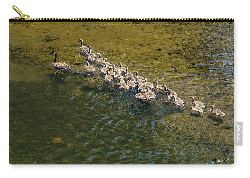 Geese Carry-all Pouch featuring the photograph Family Of Geese On The Rogue River by Mick Anderson