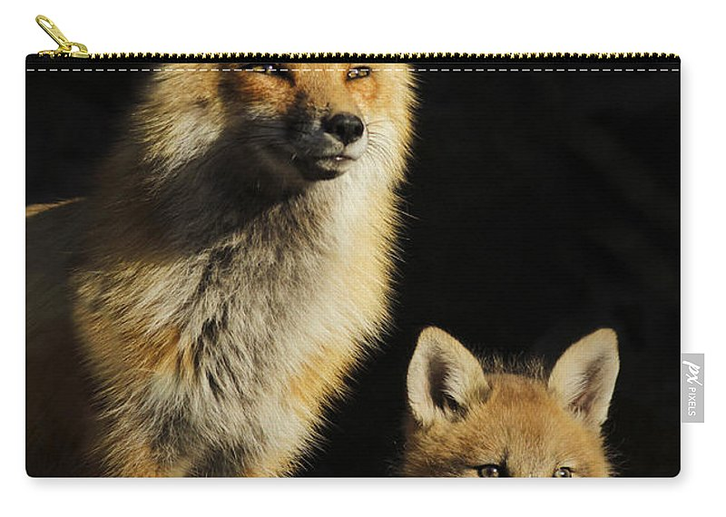 Pup Carry-all Pouch featuring the photograph Family Portrait by Mircea Costina Photography
