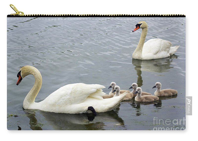 Swan Carry-all Pouch featuring the photograph Family Swim by Joe Geraci