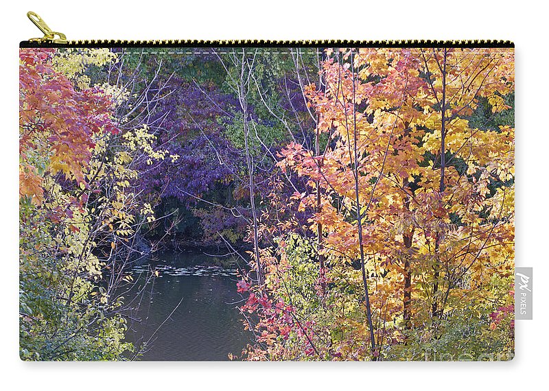 Fall Carry-all Pouch featuring the photograph Fanciful Forest by Ann Horn