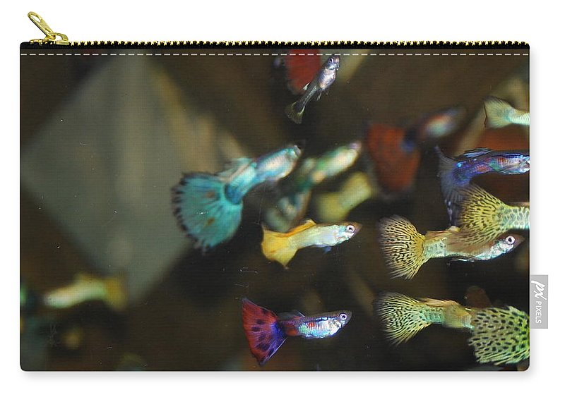 My Aquarium Carry-all Pouch featuring the photograph Fancy Guppys by Robert Floyd