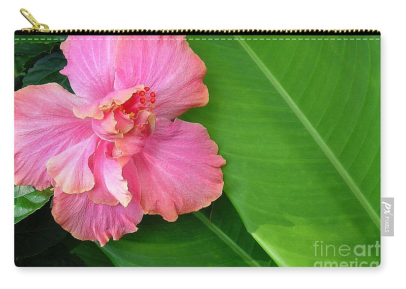 Hawaii Iphone Cases Carry-all Pouch featuring the photograph Favorite Flower 2 by James Temple
