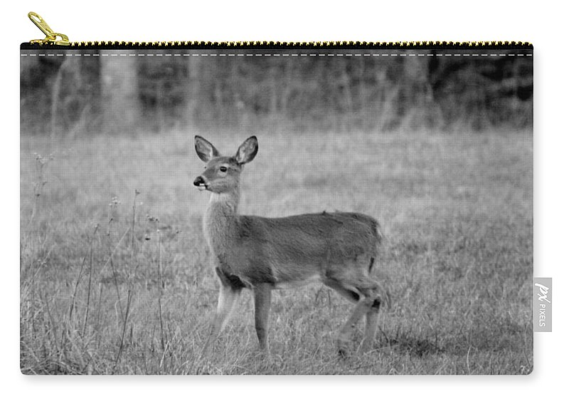 Fawn Carry-all Pouch featuring the photograph Fawn by Cynthia Guinn