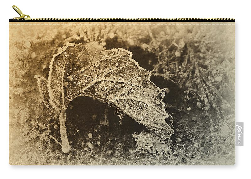 Frost Carry-all Pouch featuring the photograph Feather And Leaf by Susan Capuano