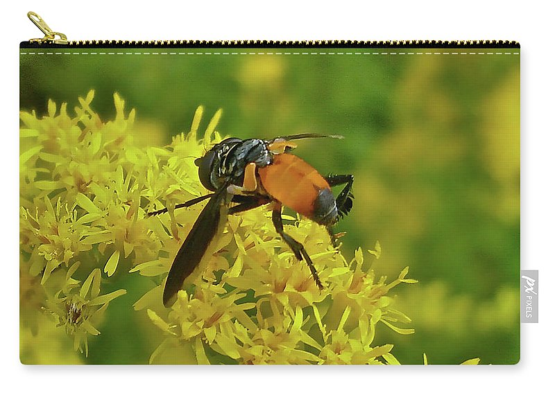 Fly Carry-all Pouch featuring the photograph Feather-legged Fly On Goldenrod - Trichopoda by Mother Nature