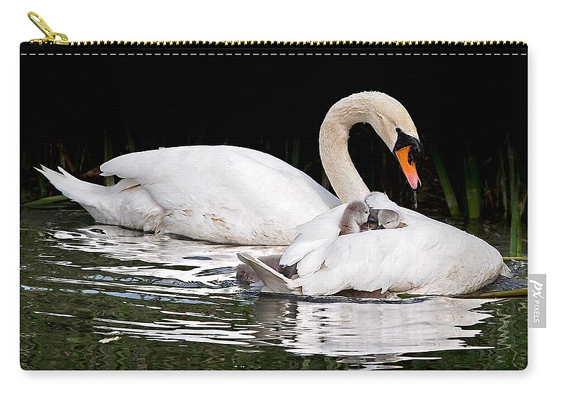 Cygnet Carry-all Pouch featuring the photograph Feather Sun Shade by Gill Billington