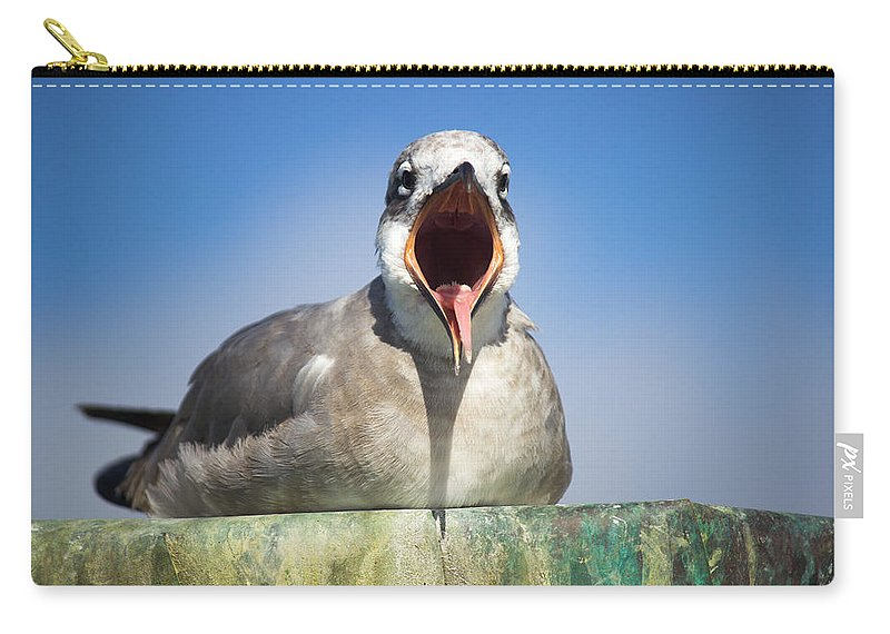 Seagull Carry-all Pouch featuring the photograph Feed Me by Mayra Pau