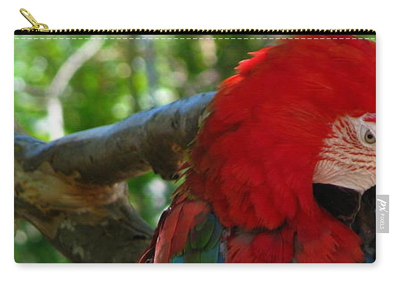 Patzer Carry-all Pouch featuring the photograph Feeling A Little Red by Greg Patzer