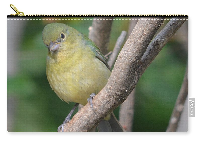 Female Bunting Prints Carry-all Pouch featuring the photograph Female Bunting by Ruth Housley