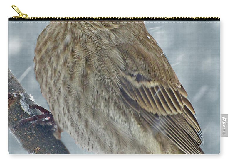Bird Carry-all Pouch featuring the photograph Female House Finch In Snow 1 by Debbie Portwood
