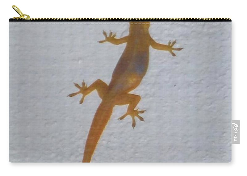 Climbing Wall At Night Carry-all Pouch featuring the photograph Female Nocturnal Lizard by Robert Floyd