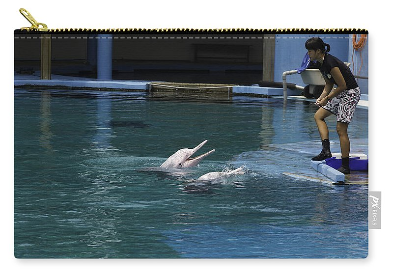2 Dolphins Carry-all Pouch featuring the photograph Female Trainer Feeding 2 Dolphins At The Underwater World In Sentosa by Ashish Agarwal