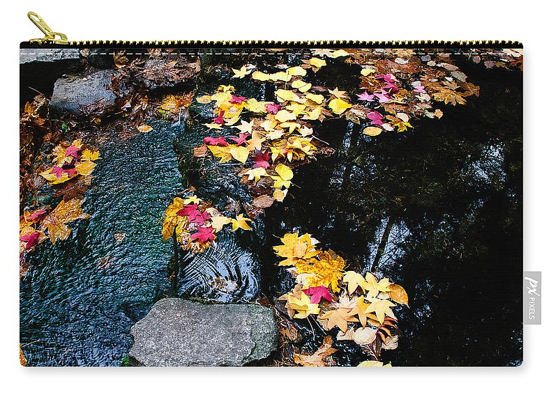 Yosemite Carry-all Pouch featuring the photograph Fern Spring Yosemite by Terry Garvin