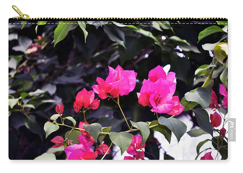 Horizontal Carry-all Pouch featuring the photograph Fernwood Botanical Garden Bougainvillea Niles Michigan Usa by Sally Rockefeller