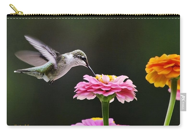 Hummingbird Carry-all Pouch featuring the photograph Few And Far Between by Christina Rollo