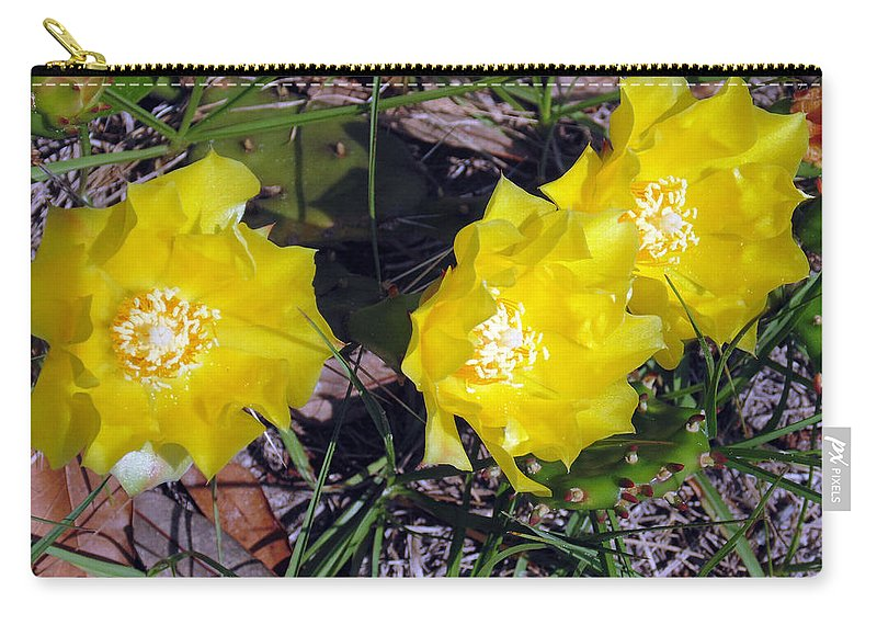 Yellow Cactus Carry-all Pouch featuring the photograph Field Cactus by Karin Dawn Kelshall- Best