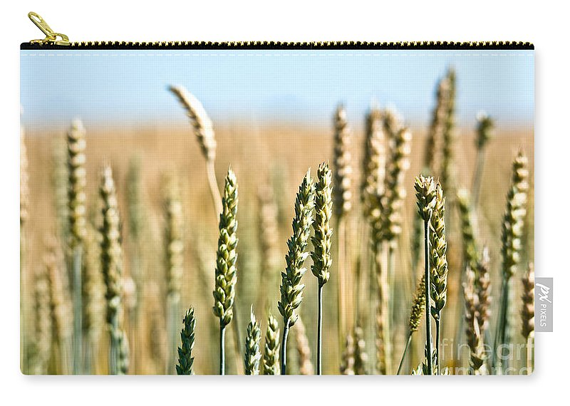 Wheat Carry-all Pouch featuring the photograph Field Of Wheat by Cheryl Baxter