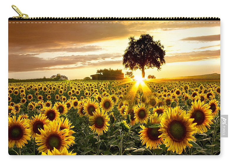 Appalachia Carry-all Pouch featuring the photograph Fields Of Gold by Debra and Dave Vanderlaan