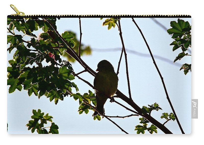 Birds Carry-all Pouch featuring the photograph Finch by Diana Hatcher