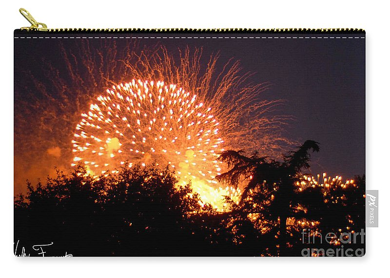 Fireworks Carry-all Pouch featuring the photograph Fireworks 2014 5 by Wesley Farnsworth