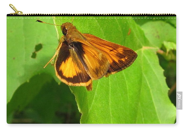 Firey Skipper Butterfly Images Butterfly Prints Nature Prints Naturalist Natural Science Meadow Ecosystem Maryland Butterfies American Butterflies Orange Butterflies Entomology Aerial Insect Images Pollinators Meadow Wildlife Wild Meadow Biodiversity Preservation Forest Flora Oldgrowth Forest Conservation Colorful Critter Prints Office Art Wall Art Green Design Green Interior Design Nature Photography Orange Butterfly Identification Forest Creatures Bugs Natural World Nature Walk Carry-all Pouch featuring the photograph Firey Skipper Butterfly by Joshua Bales