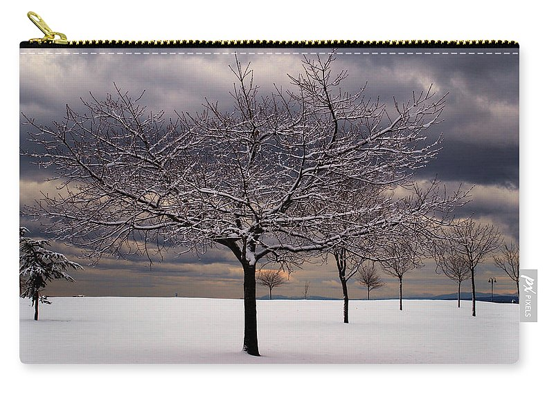 Snow Carry-all Pouch featuring the photograph First Snow 2010 by Randy Hall