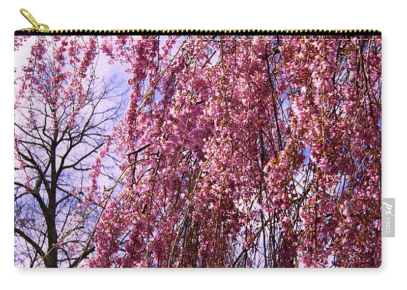 Tree Carry-all Pouch featuring the photograph First To Flower by Joe Geraci