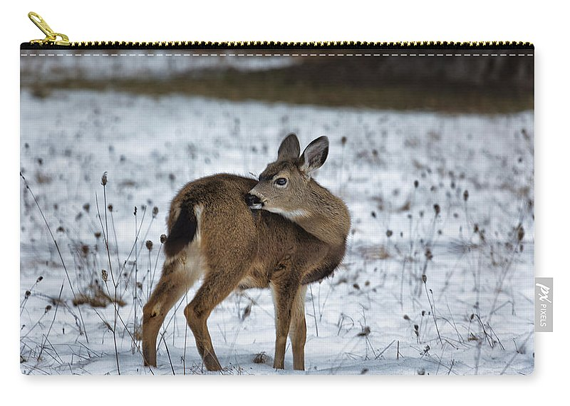 Fawn Carry-all Pouch featuring the photograph First Winter by Belinda Greb