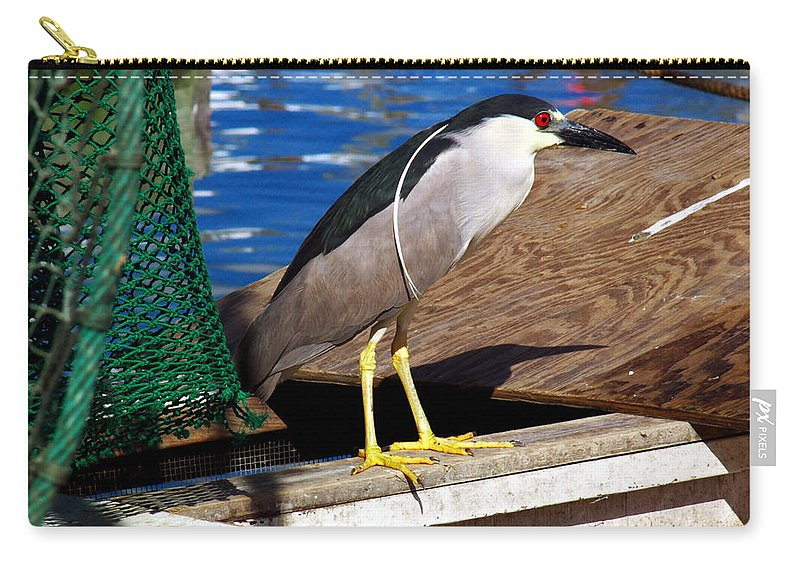 Black Crowned Night Heron Carry-all Pouch featuring the photograph Fisherman by Robert Brown