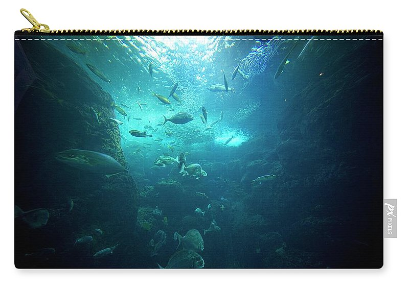 Underwater Carry-all Pouch featuring the photograph Fishes by By Tddch