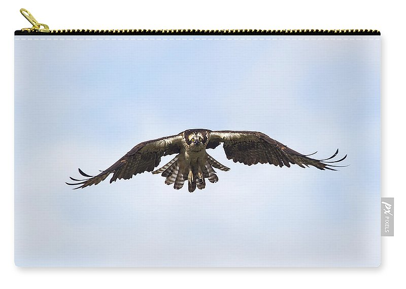 Doug Lloyd Carry-all Pouch featuring the photograph Fishing by Doug Lloyd