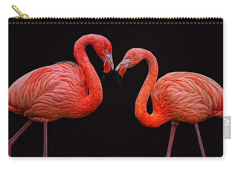 Animals Carry-all Pouch featuring the photograph Flamenco ... Baby by Joachim G Pinkawa