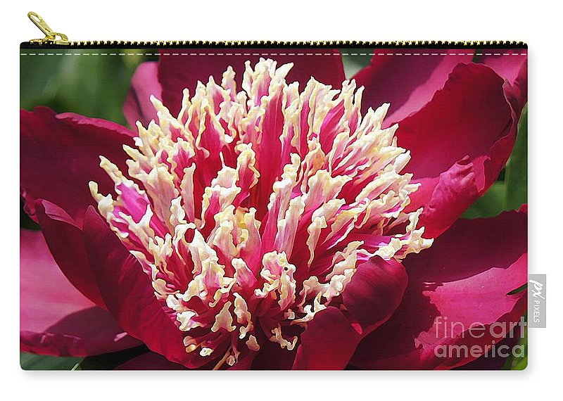 Red Carry-all Pouch featuring the photograph Flaming Peony by Lilliana Mendez