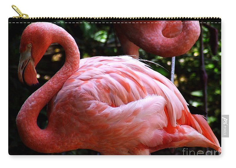 Flamingo Carry-all Pouch featuring the photograph Flamingo by Andrea Anderegg