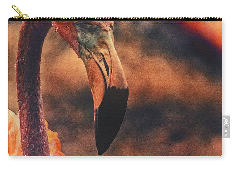 Flamingo Carry-all Pouch featuring the photograph Flamingo by Karol Livote