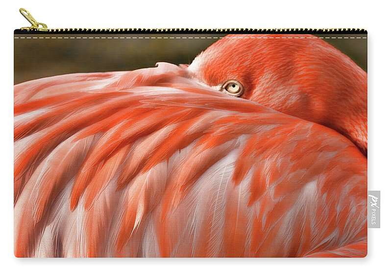 Okc Carry-all Pouch featuring the photograph Flamingo by Lana Trussell