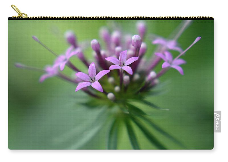Nature Carry-all Pouch featuring the photograph Flattering Compliments by Sebastiano Secondi