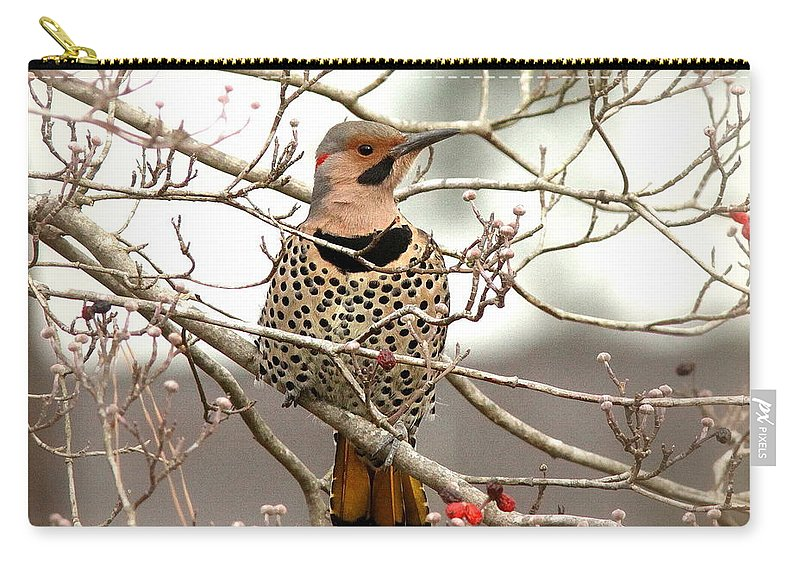 Flicker Carry-all Pouch featuring the photograph Flicker - Alabama State Bird - Attention by Travis Truelove