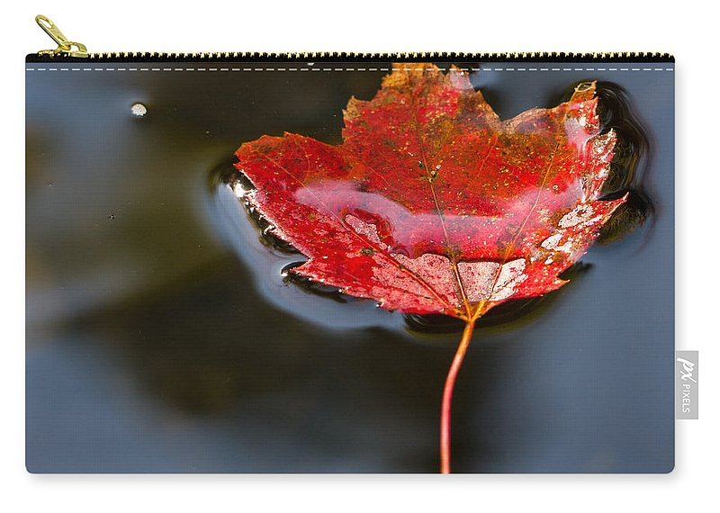 Fall Carry-all Pouch featuring the photograph Float by Edward Fielding